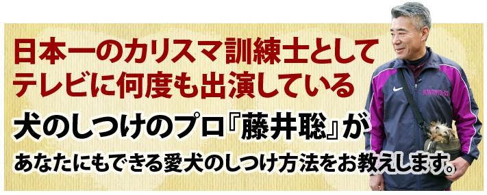 2010y01m13d_084918626.jpg